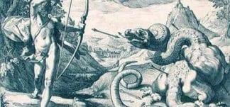 apollo killing python pics