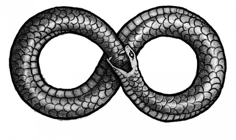 The sign and symbol of infinity, the Ouroboros dragon, serpent, snake is depicted in this picture.