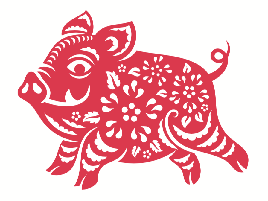 What it Means to be Born the Year of the Pig